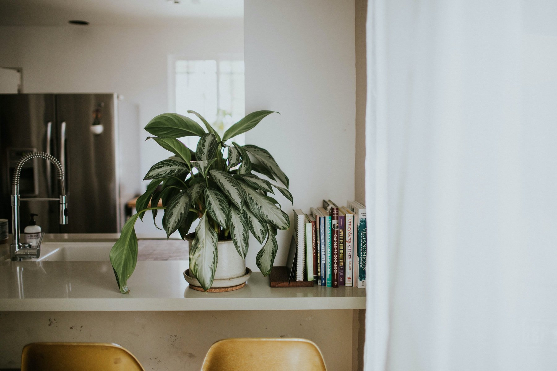WHY BEAUTY IS FOUND IN HEALTHY LIVING - THE YELLOW ROOM